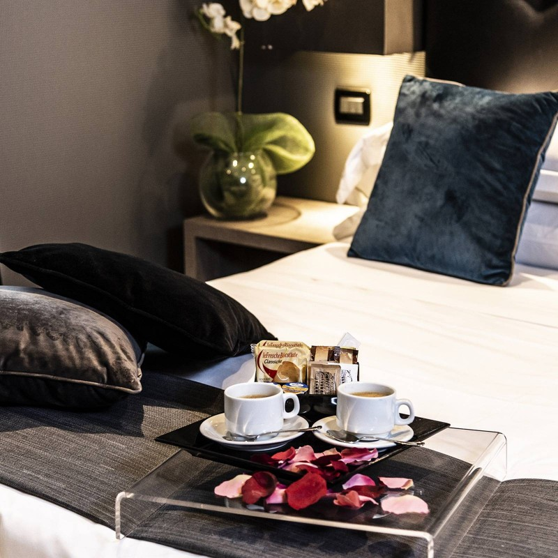 Dharma-luxury-hotel-camera-classic-4-1